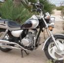 Veicoli e motoveicoli