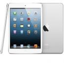 iPad mini, Apple, Tim Cook