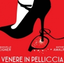 Venere in Pelliccia, film al cinema