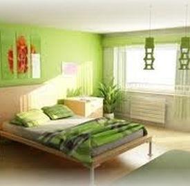 Arredamento abbellire gli ambienti nei toni del verde for Abbellire le pareti