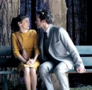 Mood Indigo al cinema
