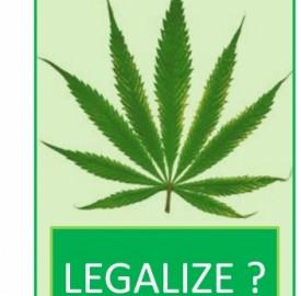 """<span style=""""color: #cccccc; font-family: Arial, Helvetica, sans-serif; font-size: 12px; text-align: justify;"""">Foglia di Marijuana, simbolo della legalizzazione</span>"""