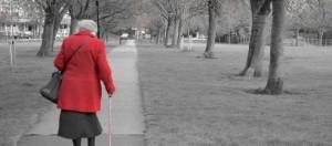 Pensioni 2014: le anticipazioni di novembre
