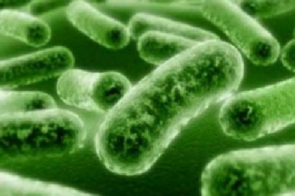 Influenza 2014: sintomi e prevenzione