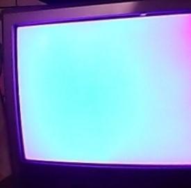 programmi tv di sabato 8 febbraio 2014