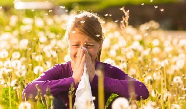I sintomi e i rimedi naturali per combattere l 39 allergia a - L allergia porta sonnolenza ...