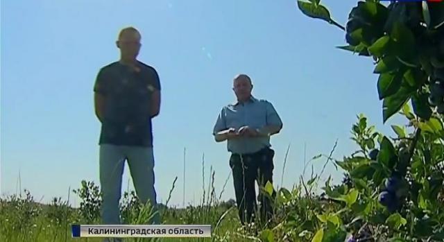 Rosyjscy rolnicy zacierają ręce.