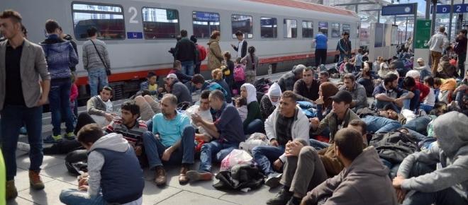 Nielegalni imigranci w Danii masowo zaniżają swój wiek
