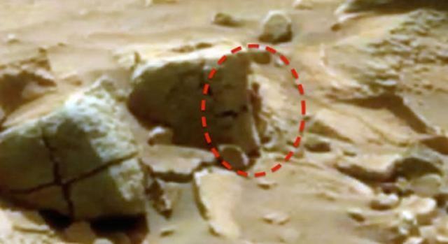 Resultado de imagem para humanóide em marte nasa