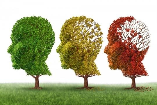 Alzheimer's linked with cerebrovascular diseases - pulseheadlines.com