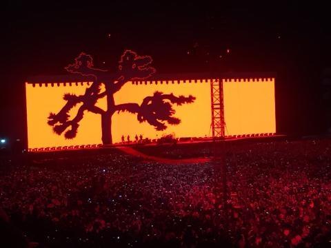 El árbol de The Joshua Tree adornando la gran pantalla en el concierto de U2
