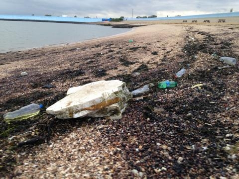 Discarded and / or carelessly disposed plastic. Canvey Island seafront.