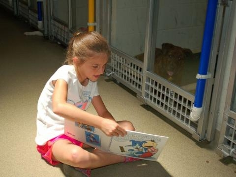 1000+ images about Kids Read To Dogs & Cats In Shelters on ... - pinterest.com