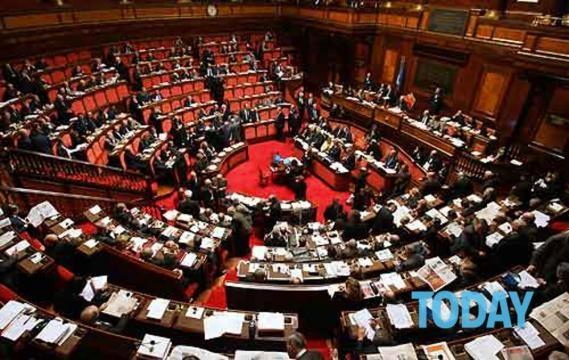 Quanto guadagnano i politici? Gregorio Gitti (Pd) dichiara quasi ... - today.it