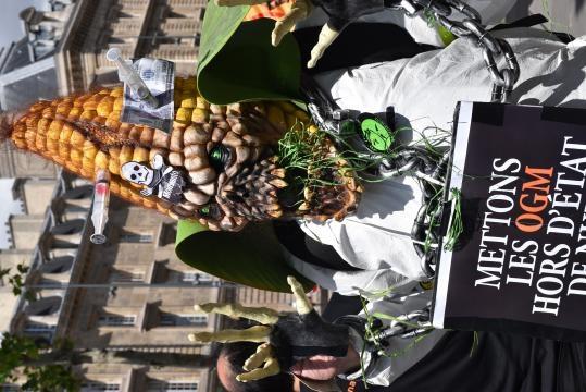 Mascotte de la Marrche Mondiale contre Monsantos et Bayer