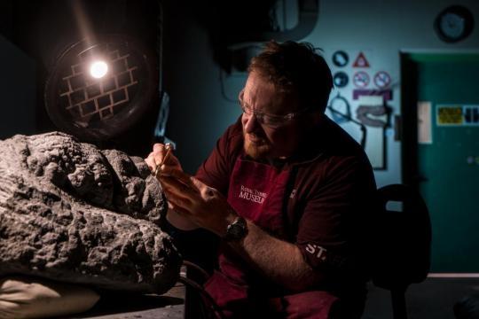 Royal Tyrrells MuseumstechnikerMark Mitchell befreit vorsichtig den Fuß desNodosaurus vom umliegenden Gestein. Bild: Robert Clark