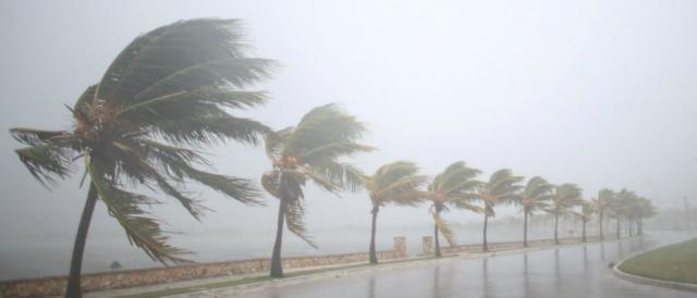 Además de Florida, la alerta por huracán y tormenta tropical se ha extendido hasta Georgia y Carolina del Sur.