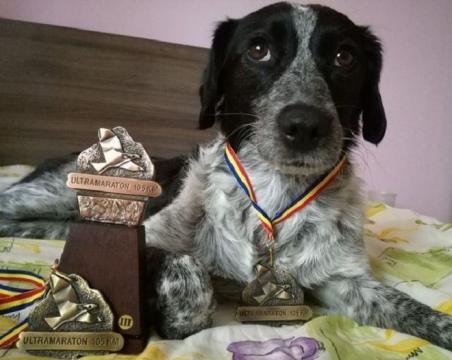 A alergat cu maratoniştii 105 kilometri prin munţi. Finalul a fost însă grandios