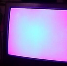 i programmi della tv: ecco cosa c'è stasera