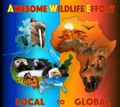 Awesome Wildlife Effort airs in November