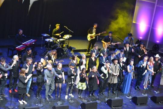 30 Künstler singen