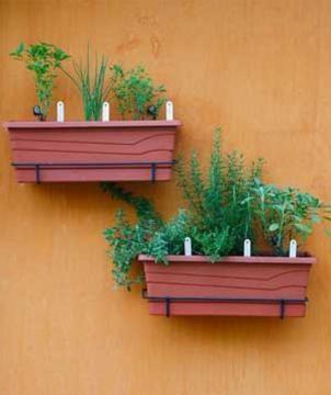 Faça sua própria mini horta em casa