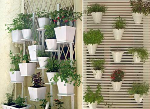 Faça sua própria mini horta e seja criativo