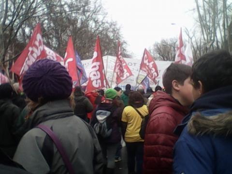 Miles de banderas tiñeron las calles de color