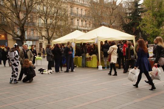 Stands installés par Animal Amnistie à Toulouse