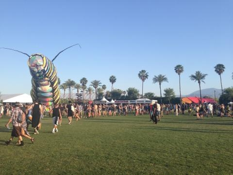 A giant caterpillar moves around this year.