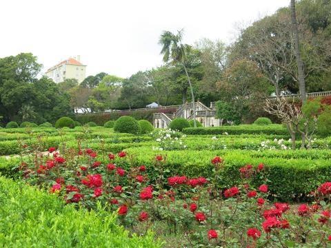Festa da Primavera, visita guiada ao jardim.