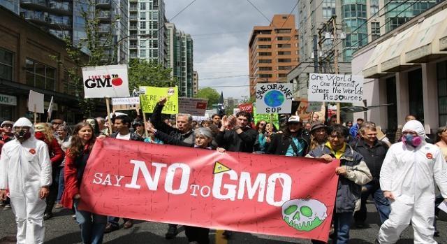 manifestazione contro la Monsanto e i suoi OGM