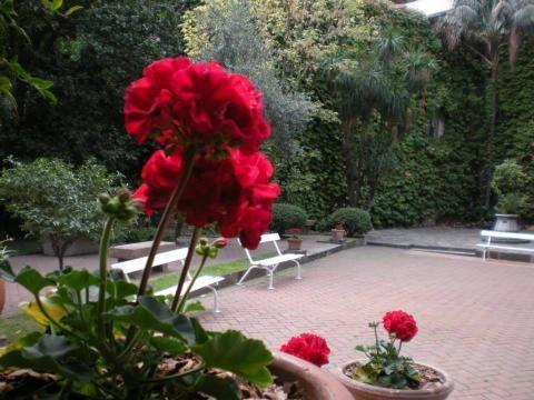Vista de los jardines del Palacio Noel