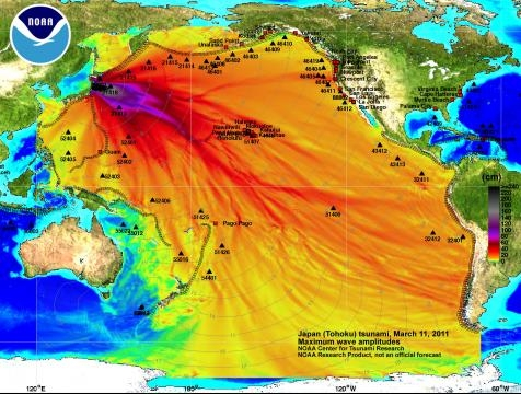 Fukushima ha contaminato quasi 1/3 degli oceani