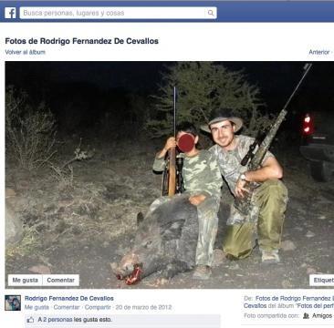 Fernández de Cevallos enseña cazar puerco.