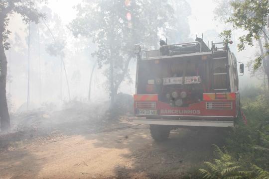 Incêndio florestal na Paradela.