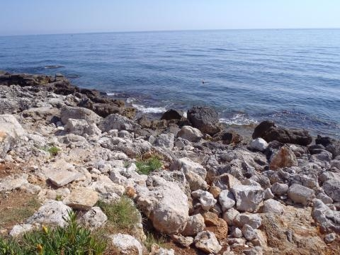 Un exemple de plage de cailloux