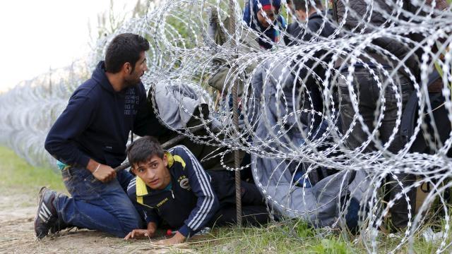 Il filo spinato nel ricordo dell'olocausto