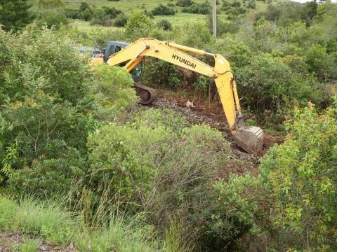 Desbravando em meio a mata e cavando solo ingrime