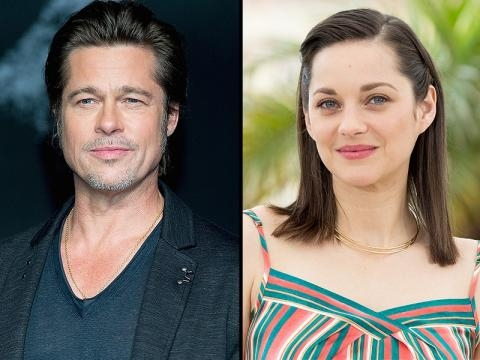 Marion Cotillard and Brad Pitt to Star in World War II Project - people.com