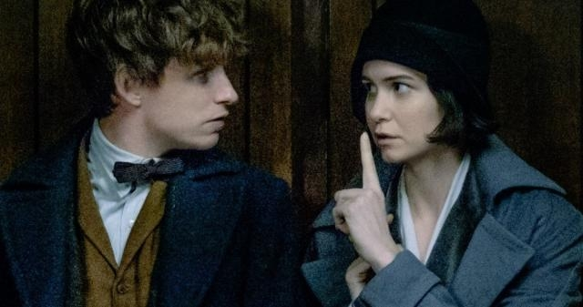Fantastic Beasts and where to find them movieweb.com