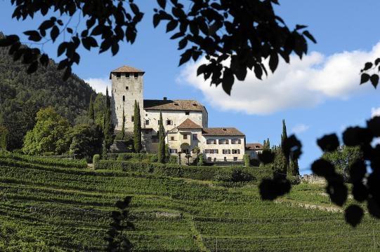 Quelle: Pixabay - Wein in Südtirol