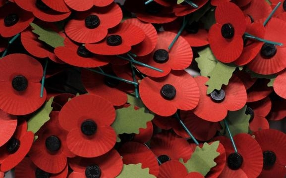 The paper poppy of remembrance