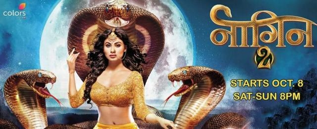 Finally Shivangi's Truth is Revealed In Naagin 2 - Telly Focus - tellyfocus.in