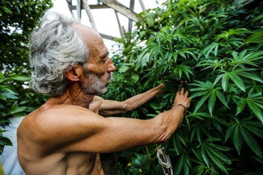 O uruguaio Gonzalo com as plantas que cultiva