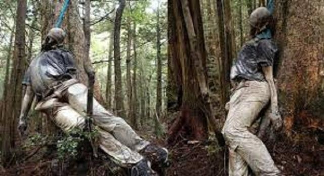 Cadaveres encontrados en el bosque de los suicidios