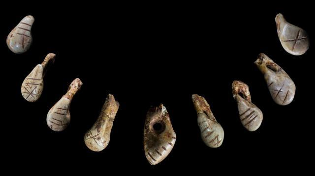 Dientes de ciervo que fueron usados como collar en la Edad de Hielo