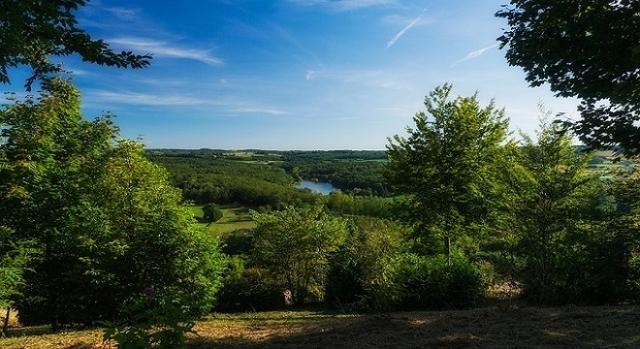 Boschi e foreste in crescita sul territorio nazionale.