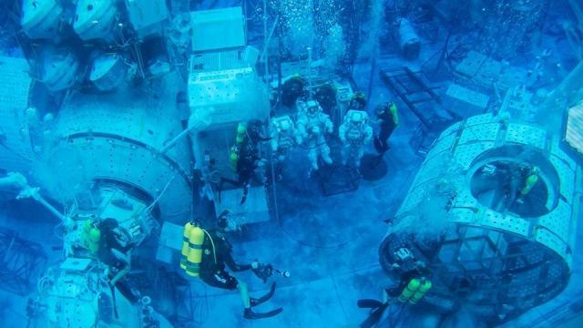 Gli 'acquanauti' immersi nel laboratorio 'Aquariaus' - meteoweb.eu