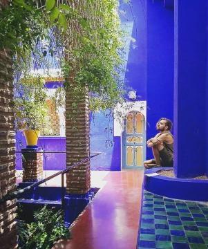 I Giardini Majorelle:un luogo dell'anima nel cuore del Marocco esotico